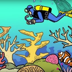 Picture of a still from the JIm Toomey video. showing a cartoon of a scuba diver swimming over a coral reef taking photos.