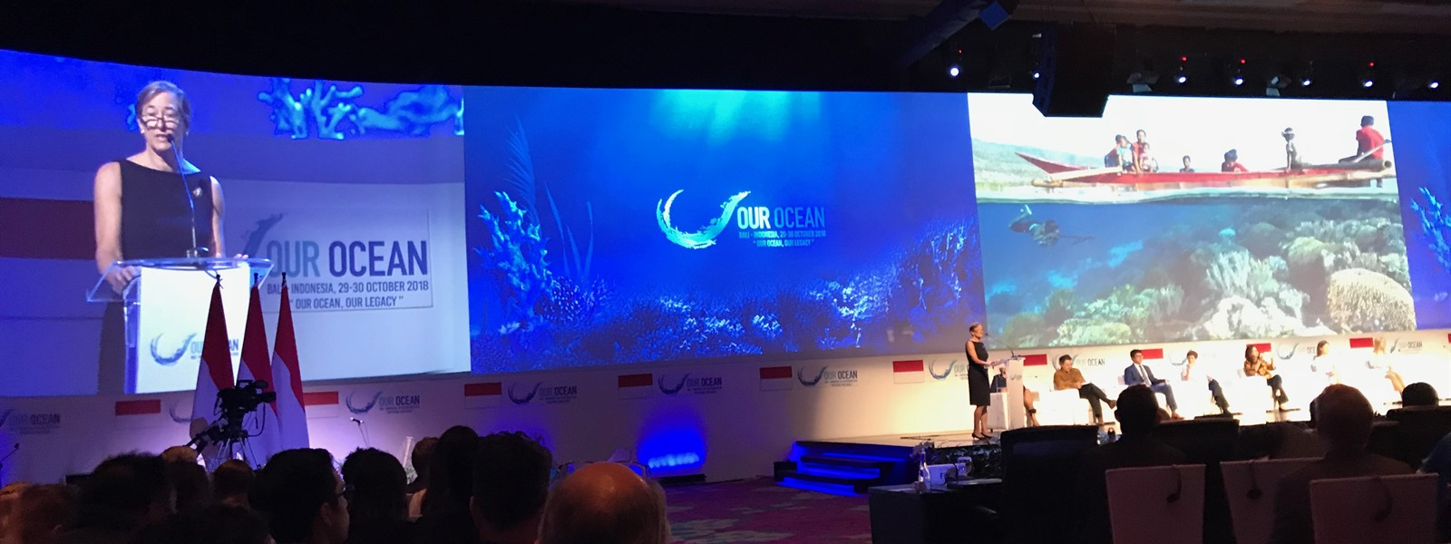 Picture of a presentation at the Our Ocean conference in Indonesia.