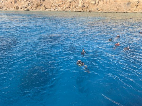 Picture of divers in the sea in Egypt.