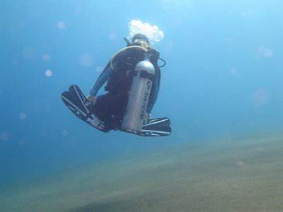 Picture of a scuba diver swimming in the ocean, close to the ocean floor.