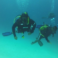 Picture of three scuba divers swimming in the ocean.