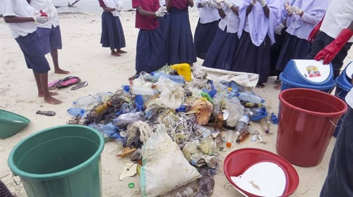 Picture of trash collected on a beach clean being sorted.