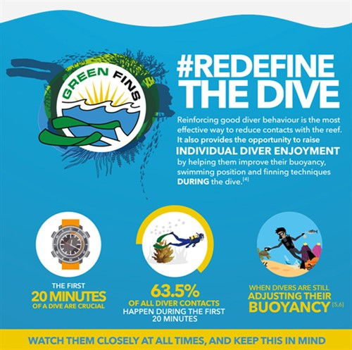 Picture of a Green Fins graphic to promote # Redefine the Dive