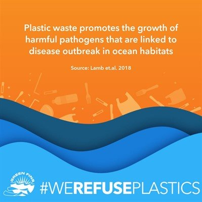 Picture of a graphic. Plastic waste promotes the growth of harmful pathogens that are linked to disease outbreak in ocean habitats. Source: Lamb et.al. 2018