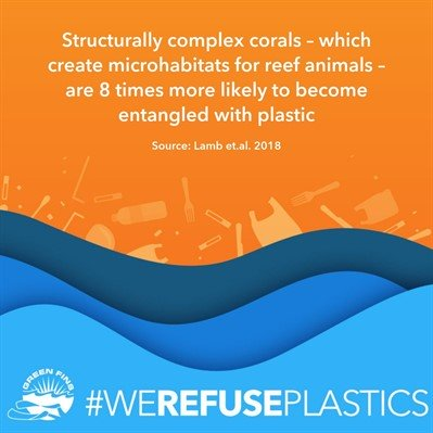 Picture of a graphic. Structurally complex corals - which create microhabitats for reef animals - are 8 times more likely to become entangled with plastic. Source: Lamb et.al. 2018