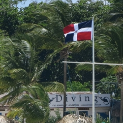 Picture of the Dominican Republic flag.
