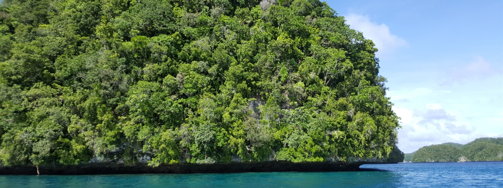 Picture of the ocean and shoreline in Palau.