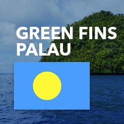 Picture of the ocean and shoreline in Palau, with the Palau flag and text reading 'Green Fins Palau'.