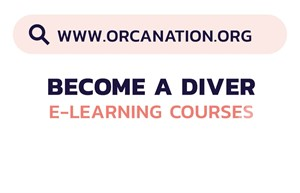 Graphic with the OrcaNation website. www.orcanation.org. Become A Diver E-Learning Courses.