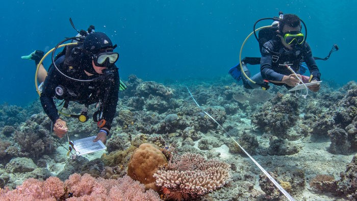 Picture of two divers on a coral reef. They are taking measurements and making notes.