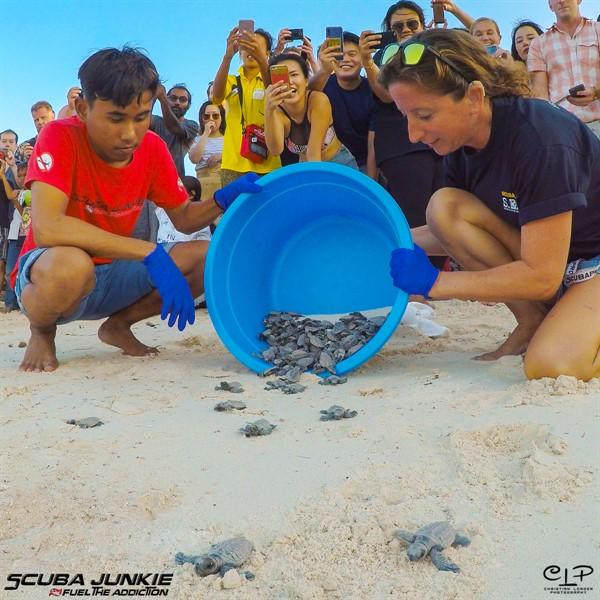 Picture of two people releasing baby turtles onto a beach. There is a group of people in the background taking photos.