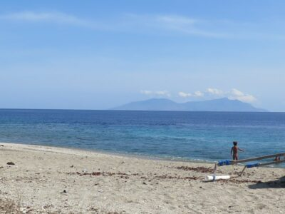 Go East: Introducing Green Fins to Timor-Leste, December 2019