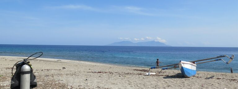 Picture of the beach and ocean in Timor-Leste.
