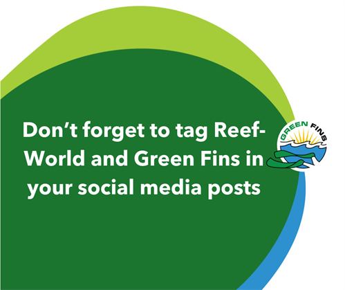 Picture of a Green Fins graphic: Don't forget to tag Reef-World and Green Fins in your social media posts.