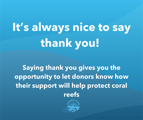Picture of a Green Fins graphic: Saying thank you gives the opportunity to let donors know how their support will help protect coral reefs.