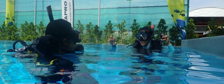 Picture of snorkelers in the water.