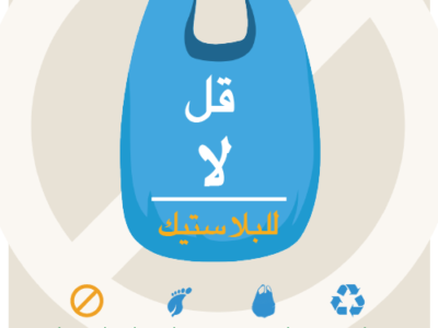 GREEN FINS MATERIALS NOW AVAILABLE IN ARABIC AND JAPANESE
