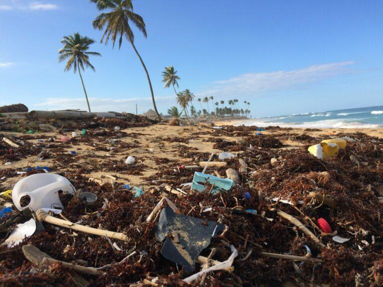 Trash on Punta Cana beach