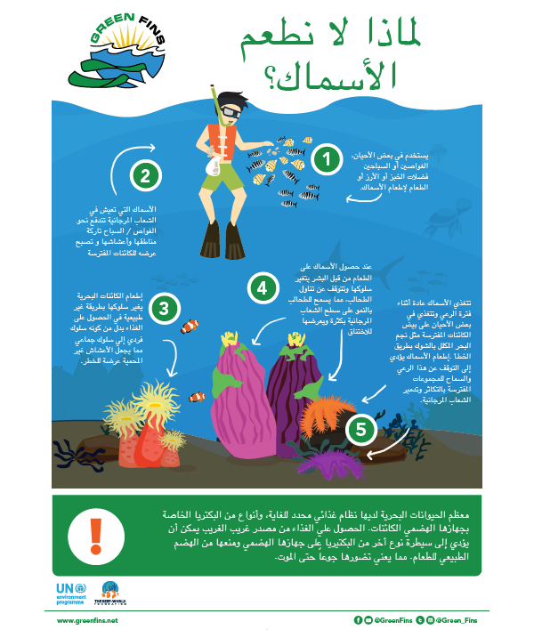 Why we don't Feed Fish Infographic (Arabic - عربى)