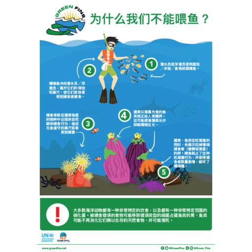 Why we don't Feed Fish Infographic (Simplified Chinese - 简体中文)