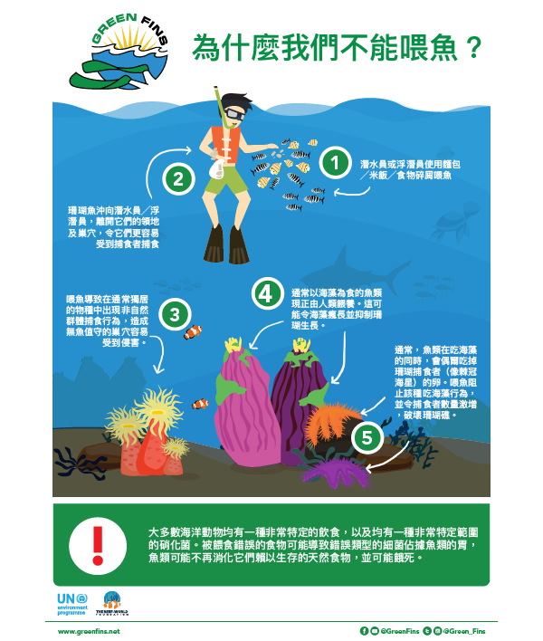 Why we don't Feed Fish Infographic (Traditional Chinese - 繁體中文)