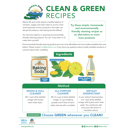 Non-Toxic Cleaning (Clean & Green) Recipe
