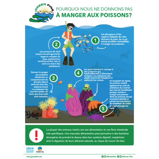 Why we don't Feed Fish Infographic (French - français)