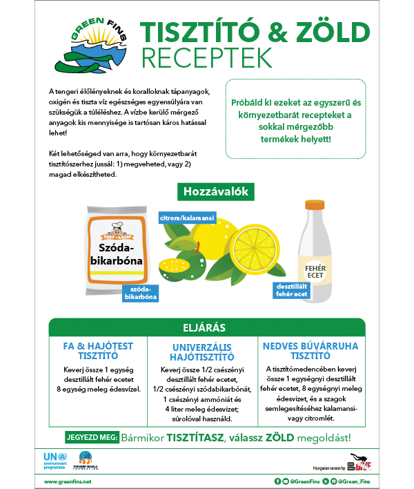 Non-Toxic Cleaning (Clean & Green) Recipe (Hungarian - Magyar)