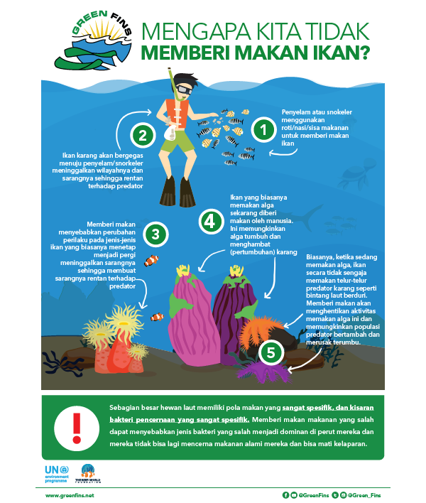Why we don't Feed Fish Infographic (Indonesian - Bahasa Indonesia)
