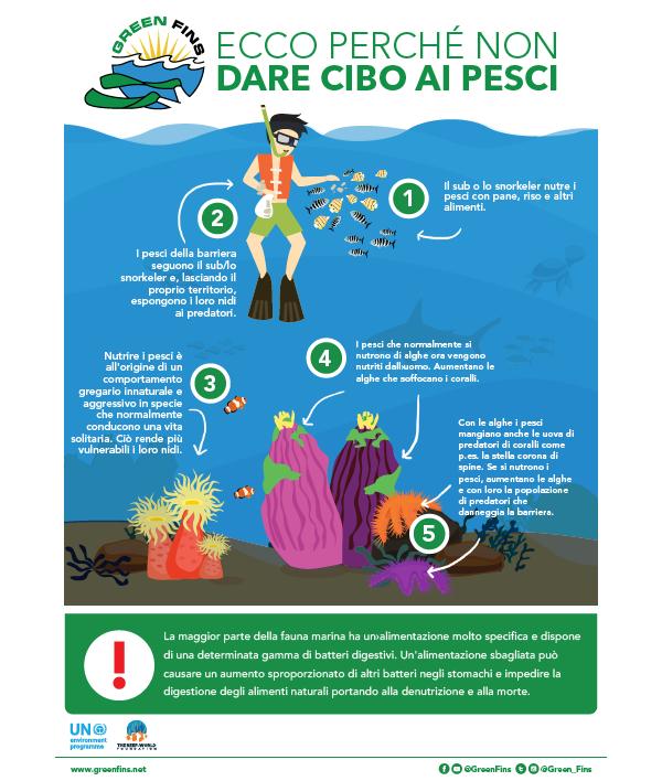 Why we don't Feed Fish Infographic (Italian - Italiano)
