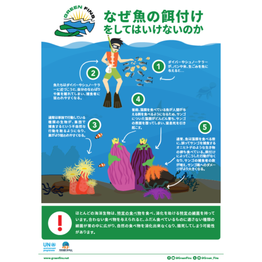 Why we don't Feed Fish Infographic (Japanese - 日本人)