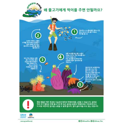 Why we don't Feed Fish Infographic (Korean – 한국어)