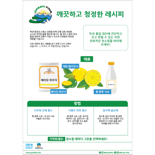 Non-Toxic Cleaning (Clean & Green) Recipe (Korean – 한국어)
