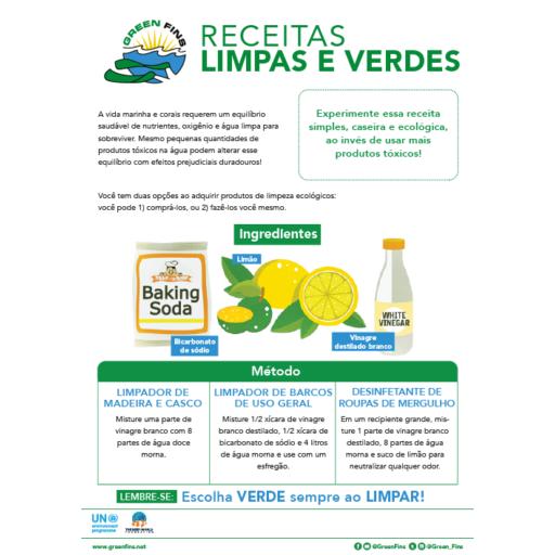Non-Toxic Cleaning (Clean & Green) Recipe (Portuguese - Português)